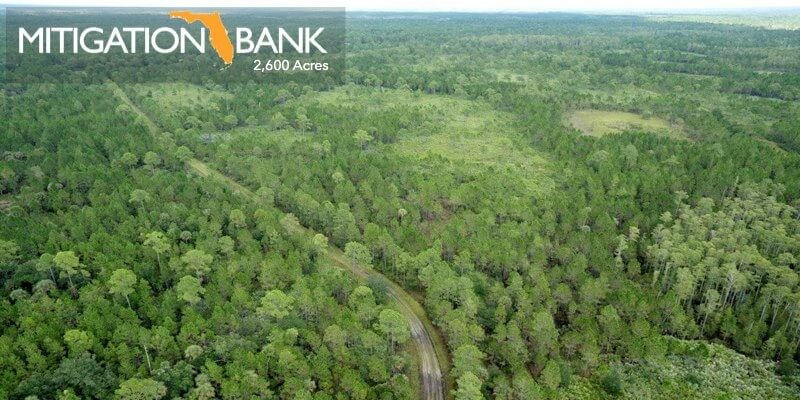 2600 Acre Florida Wetlands Mitigation Bank For Sale
