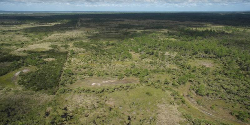 أراضي الغابات للبيع في الولايات المتحدة الأمريكية