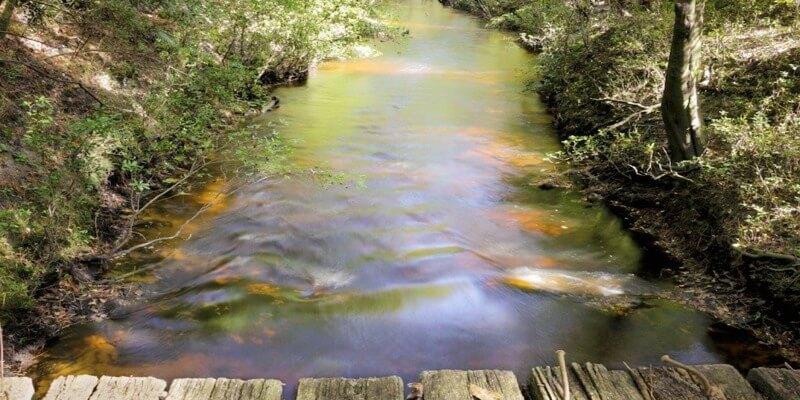 Estancia en Venta en Florida EEUU - 1.127 Hectáreas