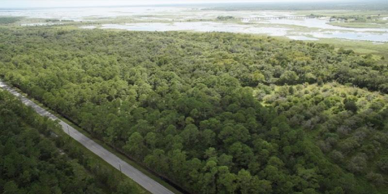 在美国销售的林地