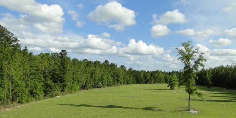 フロリダでの販売のために自然が保護区します。