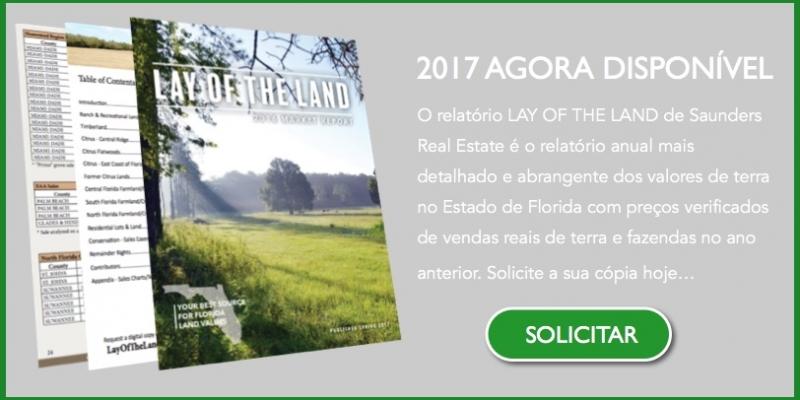 2017 Relatório Valores Terra Florida EUA