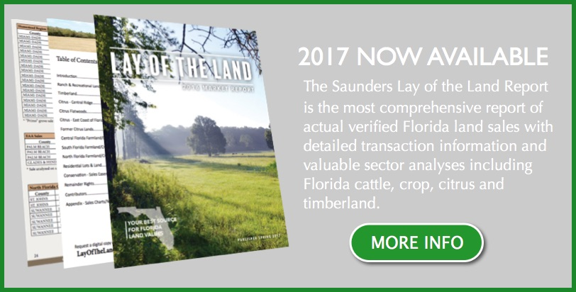 2017 Report Land Values Florida