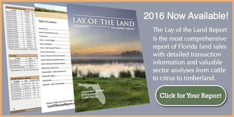 2016 Report Land Values Florida