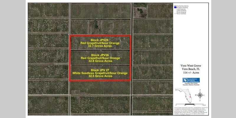 114 Acre Citrus Grove For Sale Florida