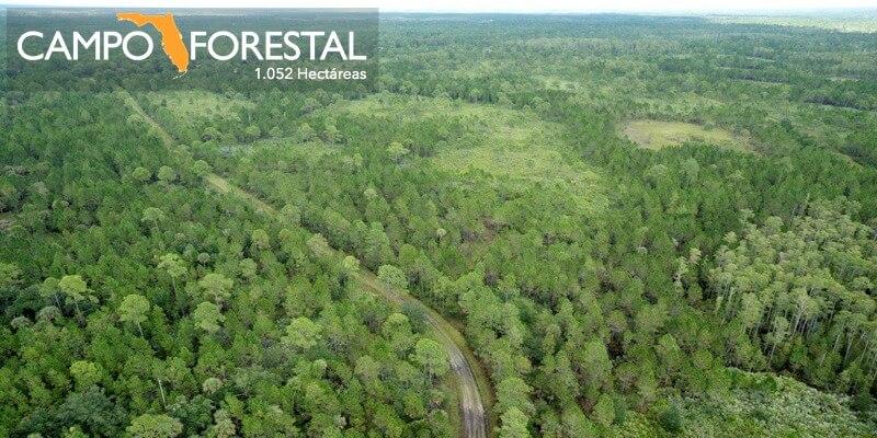 1.052 Hectares Campo Forestal en Venta Florida EEUU