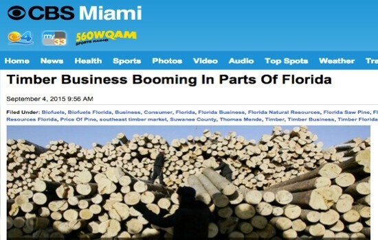 Florida Timber Investments
