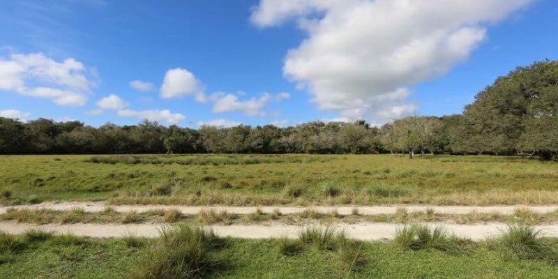 Rancho Ganadero en Venta en Flroida EEUU