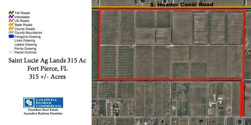 315 Acre Florida Citrus Grove For Sale