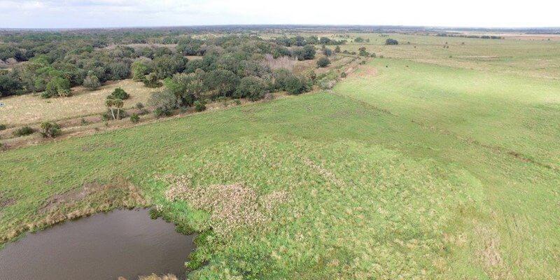 ranch de bétail à vendre en Floride