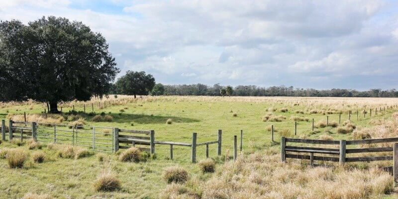ранчо на продажу в США