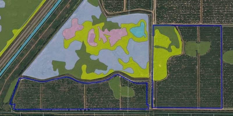 Fazenda Laranja Venda Florida EUA