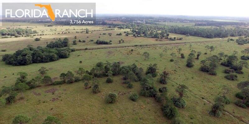 3756 Acre Florida Cattle Ranch For Sale