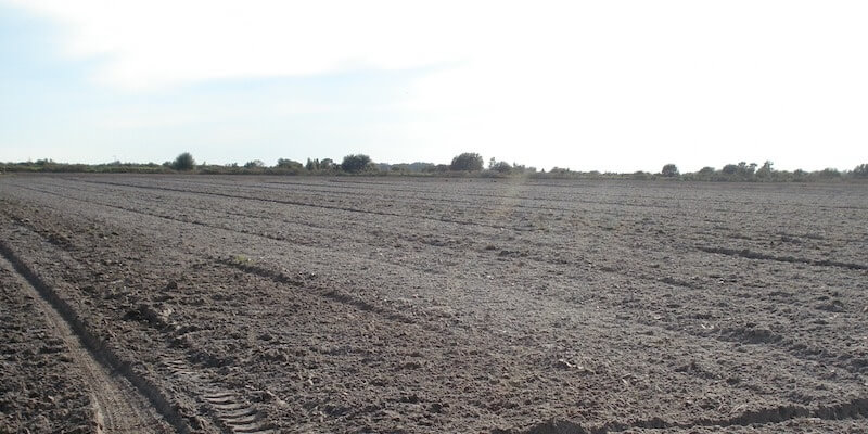 Fazenda Agricola venda Florida EUA