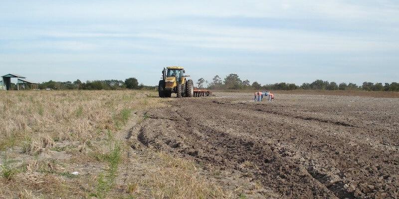 2254 Acre Florida Crop Farm For Sale