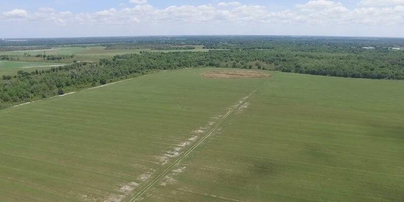 Campo Agrícola en Venta en Florida EEUU rícola en Venta en Florida EEUU