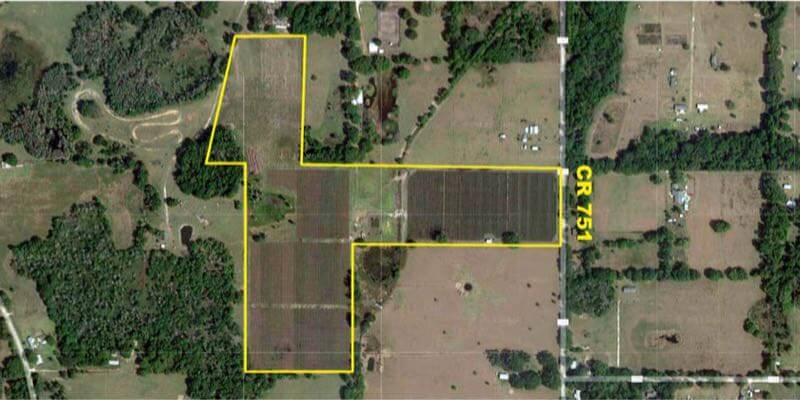 46 Acre Florida Blueberry Farm For Sale Sumter County