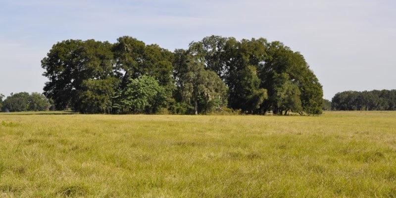 Bauernhof zum Verkauf in der Nähe von Ocala
