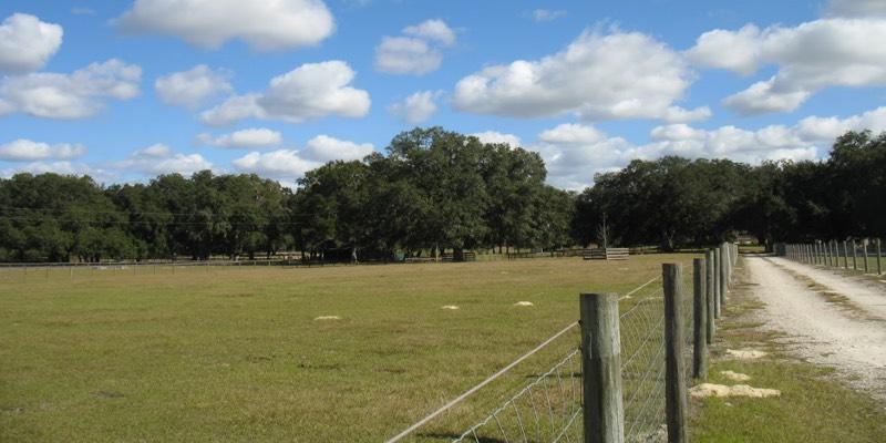 paarden boerderij te koop in de Verenigde Staten