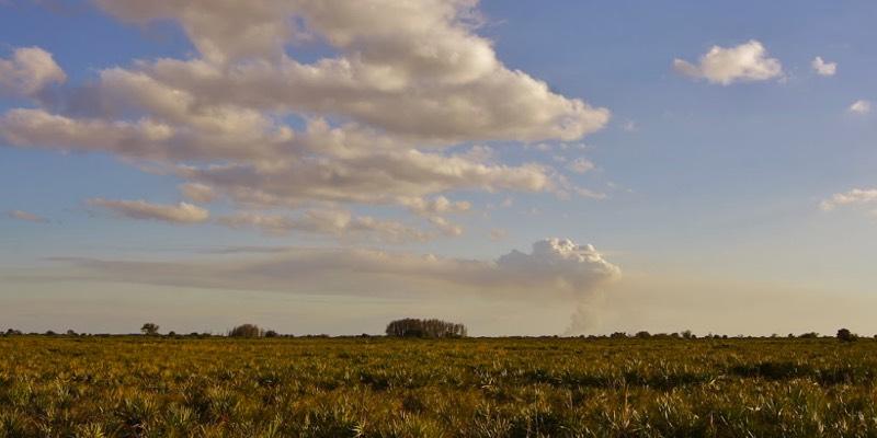 rancho ganadero en venta en estados unidos