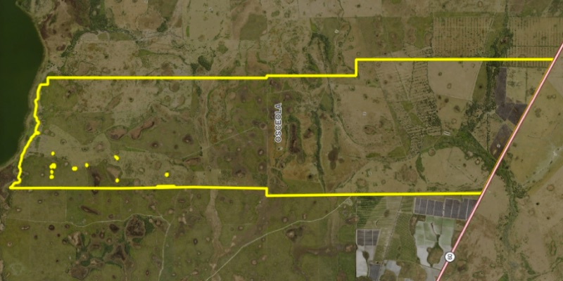 cattle ranch for sale osceola county