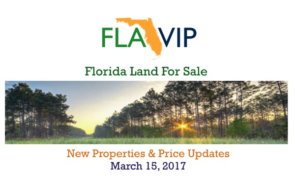 Florida Timber Plantation For Sale