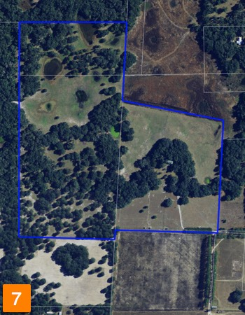 florida horse farm for sale