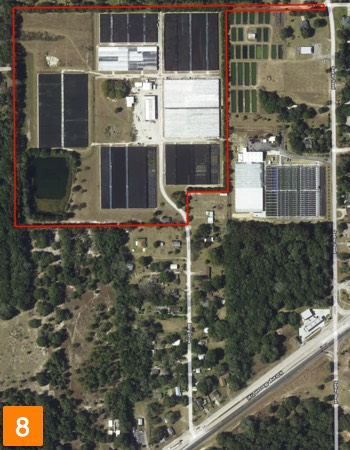 florida plant nursery for sale