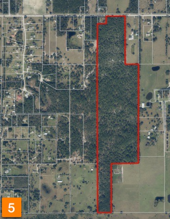 Residential Development Land For Sale in Lithia