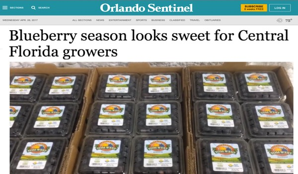 2017 Blueberry Season Florida Orlando Sentinel