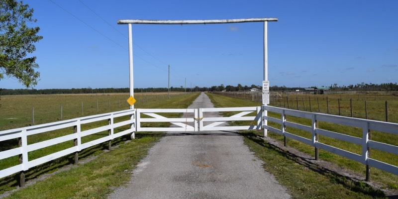 Horse Farm For Sale Near Okeechobee