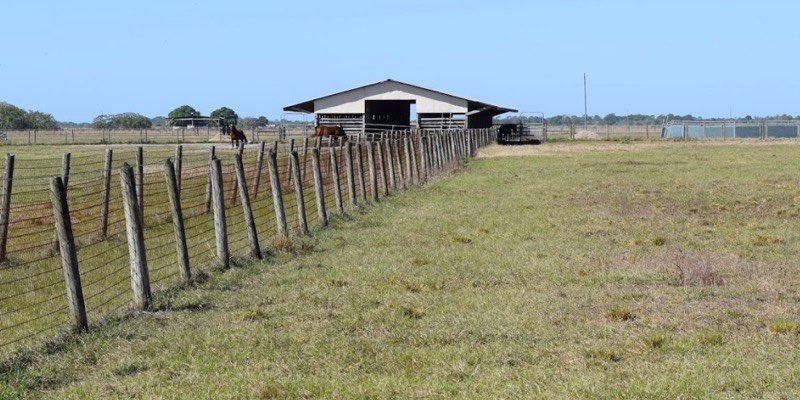 马场出售在美国