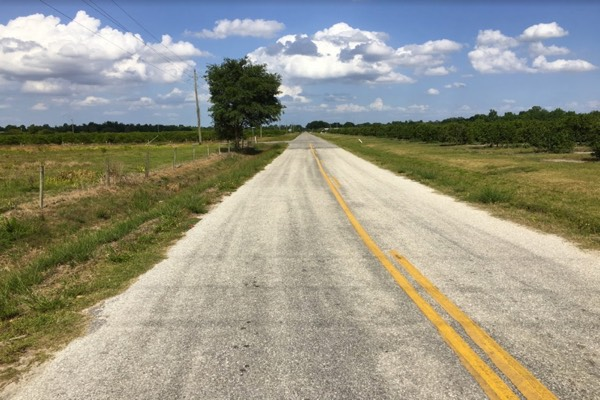 Florida Pasture Land For Sale