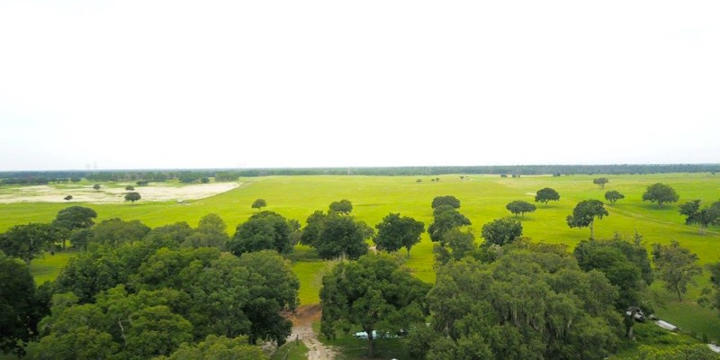 large ranch for sale in florida