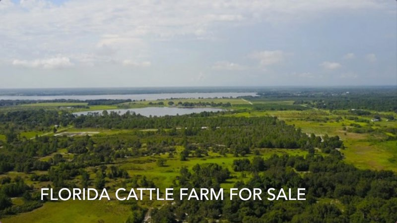Cattle Farm for sale in Florida