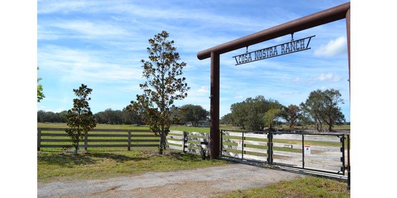 fazenda pecuaria en venda florida USA