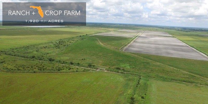 Florida crop farm for sale