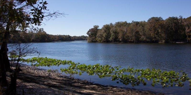 Area Beira Mar para Desenvolvimento Florida EUA