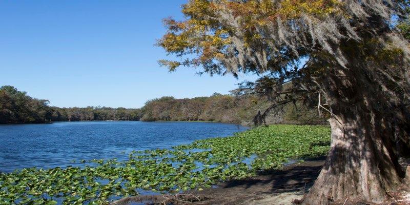 Terreno Frente al Río para Desarrollo Residencial en Florida