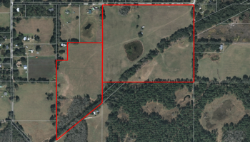 Cattle Farm For Sale in Sumter County Florida