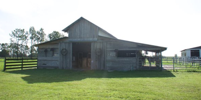 Florida Horse Farm For Sale with Home