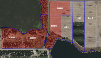 Lakefront Lots for Sale in Florida
