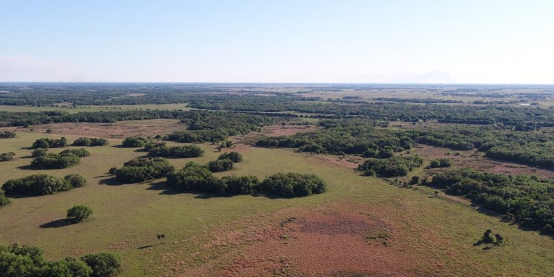 Cattle Ranch For Sale in Florida