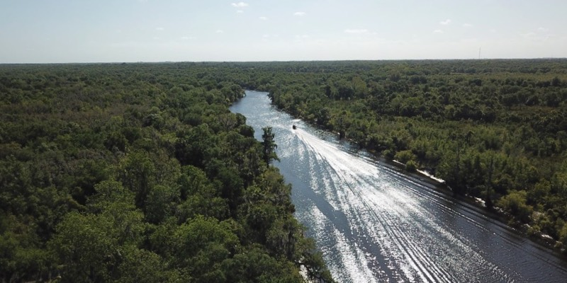 878 Acres For Sale in Florida