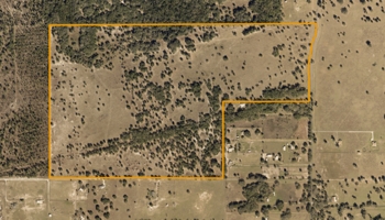 179 Acre Florida Cattle Ranch For Sale