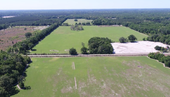 206 Acre Crop Farm Florida