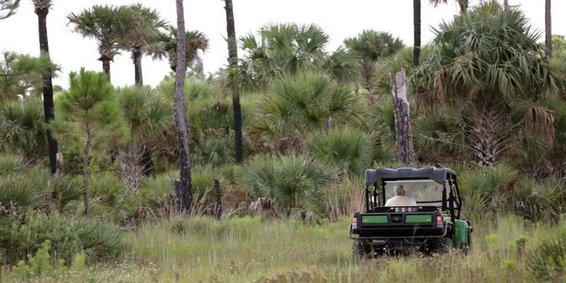미국에서 판매를위한 숲 토지