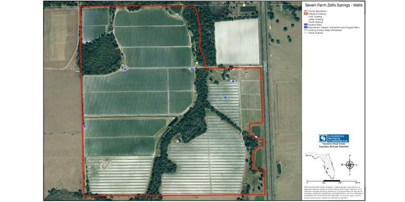 289 Acre Fruit Farm For Sale in Florida
