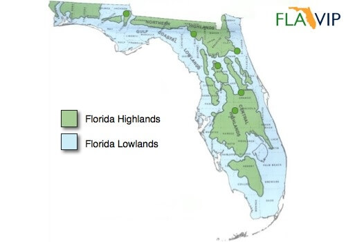 Elevation Map Of Florida.Florida Olives Could Be The State S Next Premium Fruit Crop