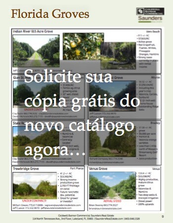 2016 Landbook 03 BRA